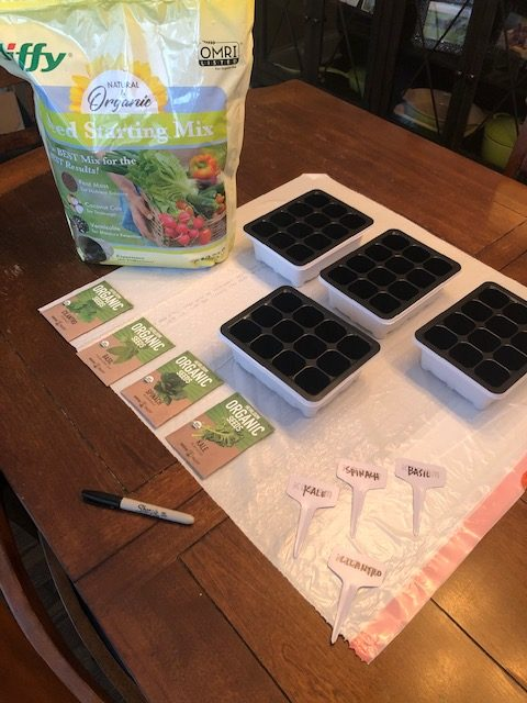 Shows seed planting setup. We hope that growing some of our own food will help us save money on groceries.