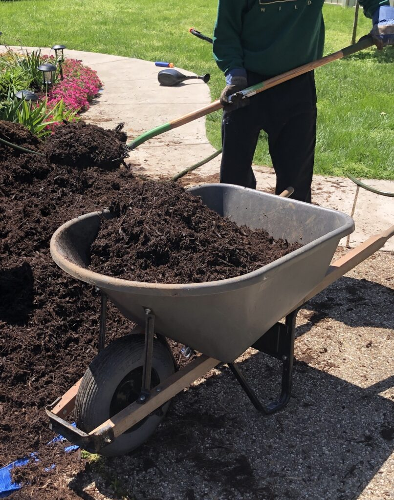 a wheelbarrow and pitchfork are critical when doing mulch yourself