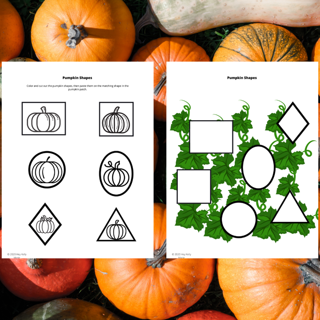 preview images of pumpkin patch shape match