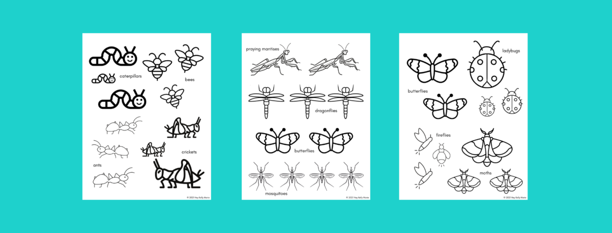 bug coloring pages preview free printable
