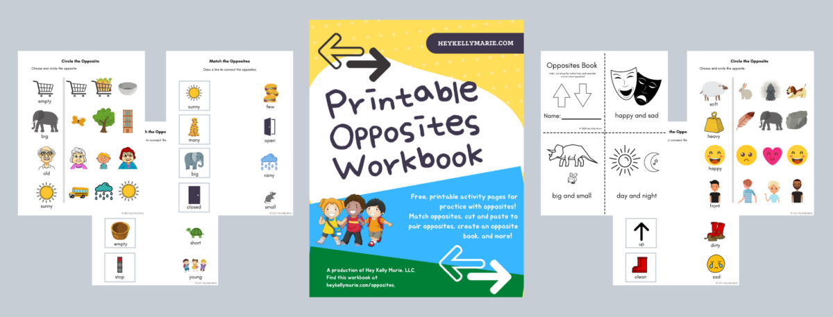 preview of printable opposites workbook